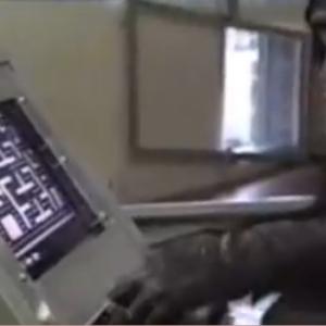 パックマンを上手にプレイする人の動画! これチンパンジーじゃ?