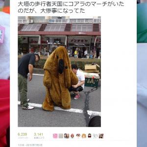 「大惨事になってた」 変わり果てた姿の『コアラのマーチ』着ぐるみの画像つきツイートが話題に
