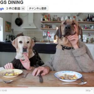 犬と人間の奇妙な二人羽織