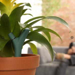 クラウドで観葉植物をリアルタイムに管理出来るガジェット『Parrot Flower Power』