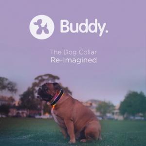 GPSで犬を追尾する!LEDで七色にも光る首輪『Buddy. The Dog Collar Reimagined』