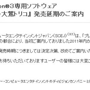 超期待の新作ゲーム『人喰いの大鷲トリコ』 発売延期が決定