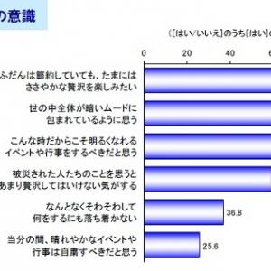 震災後の首都圏生活に変化 震災1か月後の生活と消費意識アンケート結果