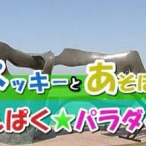 ネット住民大騒ぎ! 奇跡のクオリティー 静岡県のケーブルテレビ番組『わんパラ』