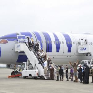 機長のアナウンス「ハンソロに代わりまして」が粋すぎるッ! 『R2-D2 ANA JET』が完成