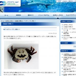 『アクアワールド茨城県大洗水族館』に凄いクオリティの「ハロウィン ガニ」現る!?