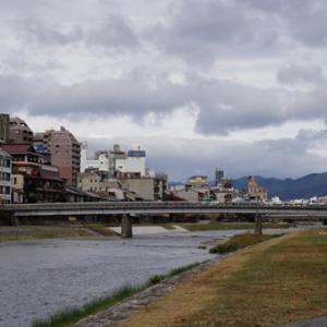 【画像】京都・鴨川は都会の真ん中にある野鳥のオアシス