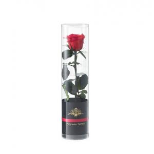 『プリザーブドフラワーDENPO「一輪のバラ」』お祝いの気持ちを鮮やかで日持ちのするバラの花に添えて!