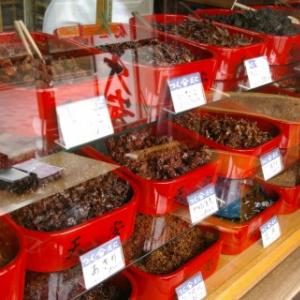 近未来に肉や魚より昆虫を食べる習慣が普及する? FAO(国連食糧農業機関)が昆虫食を評価