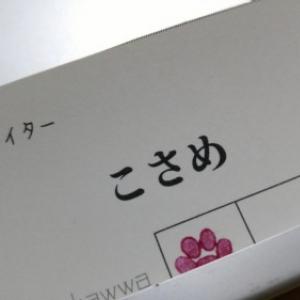 【エッセイ】名刺をポイントカードにしてみた。