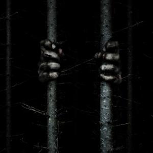 """森のなかでこちらを見ているのは一体""""何""""だ? 『サプライズ』監督コンビの極秘スリラー『ザ・ウッズ』日本公開[ホラー通信]"""