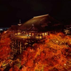 紅葉の京都に行こう! 見て楽しめる&現地で使える厳選アプリ5本