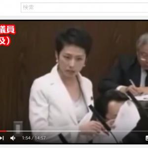 「もしも蓮舫議員の二重国籍問題を蓮舫議員が追及したとしたら」という動画が登場
