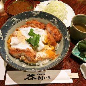 【ガジェ通秋葉原制覇】アキバでナンバーワンと呼ばれるカツ丼を食べてみた @『やまいち』