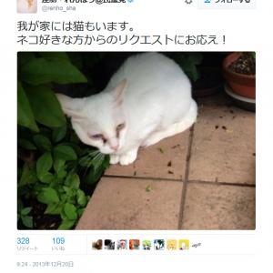 「ネコ好きな方からのリクエストにお応え!」 民進党・蓮舫代表の3年前の猫画像ツイートが話題