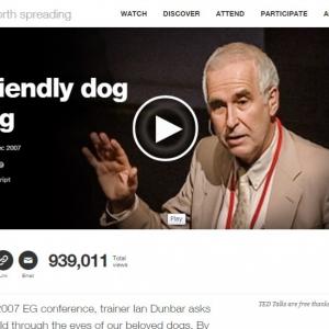 【犬のしつけ】罰とはなにか:イアン・ダンバー博士のTEDプレゼンから学ぶ事