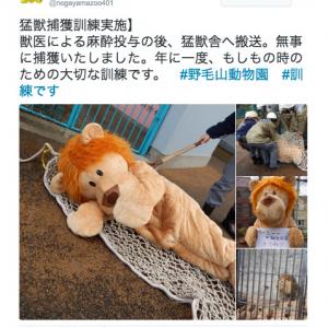 """安全を守る為の真面目な取り組みだけど……着ぐるみを使った動物園の""""脱走訓練""""が和む"""
