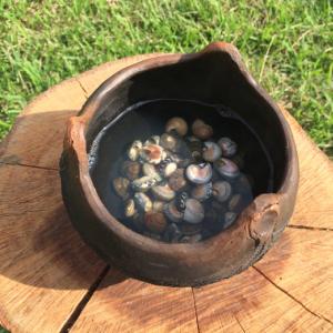 日本の出汁(だし)文化のはじまりは縄文時代にあった!? 「縄文女子」の火付け役がレポートする縄文料理