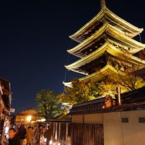京都の春を告げる京都東山花灯路~幻想的な京都の夜を愉しむ