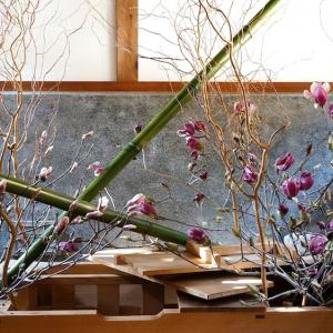 旧伊藤博文金沢別邸を華やかに彩る「花と博文邸」展