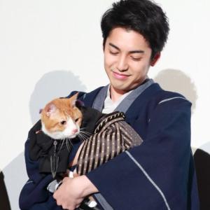 【動画】大野拓朗に抱かれた巨大猫の「金時」に会場うっとり『猫忍』初日舞台挨拶レポ