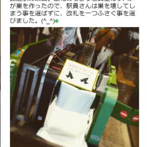 【ほっこり】「駅員さんの優しさが伝わった」との声多数! JR東日本・鎌倉駅がツバメの巣作りのために改札を閉鎖