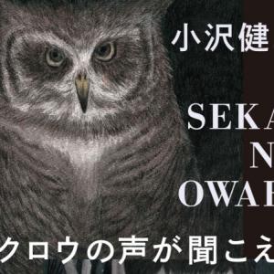 小沢健二×SEKAI NO OWARIコラボに「略称がセカオザ」「セカオザ不回避!」と話題