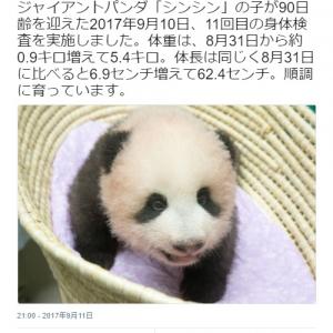 【可愛い】上野動物園の赤ちゃんパンダがすくすく育つ 「名前が楽しみ」「早く赤ちゃんパンダに会いた~い!!」とネットの声