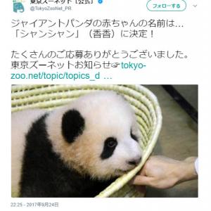 上野動物園で生まれたジャイアントパンダの赤ちゃんの名前が決定! 応募数の多かった名前は?