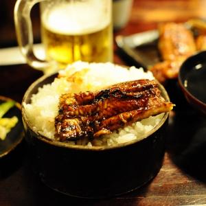 【日曜版】○○だけを食べ尽くす!鰻の本場静岡潜入編!!【一本焼】