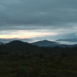【インドネシア・ドローン旅】コーヒー農場から見下ろす雲海の撮影に成功!