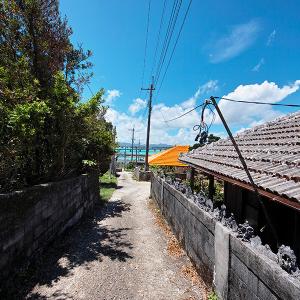 寒い冬こそ沖縄に行こう! やんばる地域の雄大な自然と文化に触れる旅 / 12月9日からやんばるアートフェスティバルが開催