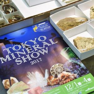 一攫千金も夢じゃない! 石の祭典『東京ミネラルショー』が12/1(金)開幕 初心者でも楽しめる歩き方ガイド[PR]