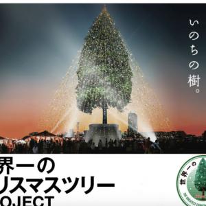樹齢150年の木をツリーにしギネス登録を目指す「世界一のクリスマスツリー」プロジェクトに批判殺到