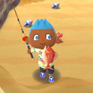 『ポケ森』魚釣りが苦手でも成功率アップする方法