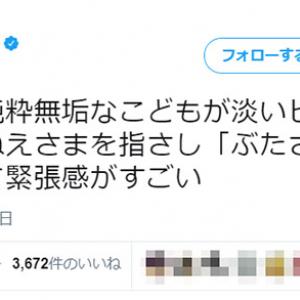 「電車内の緊張感がすごい」 元AKB48・松井咲子が遭遇した恐れ知らずの子どもに「純真無垢ゆえ残酷」「そこで神対応で返せるか」と反応集まる