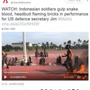 おもてなしのココロ!? インドネシアではヘビの生き血を飲み火渡りの術をして客を歓迎するらしい