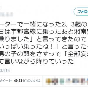 男の子にはよくあること!? 幼児「今日は宇都宮線と湘南新宿ラインに乗りました」→母親「全部妄想で~す」