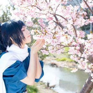 こちら桜前線「松戸 河津桜フェス」 一足早くコスプレイヤーの桜撮影写真をお届け!