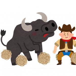 世界で最も危険なロデオ競技がヤバすぎ! 47歳で暴れ牛を乗りこなす日本人プロライダーに反響続々