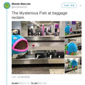 """千葉ロッテのマスコット""""謎の魚""""が世界へ拡散中! ツイート主は『ちぃたん☆』推しの日本在住イギリス人"""