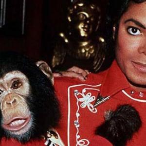 ポウーッ! マイケルの愛猿・バブルス君のゆくえが判明!