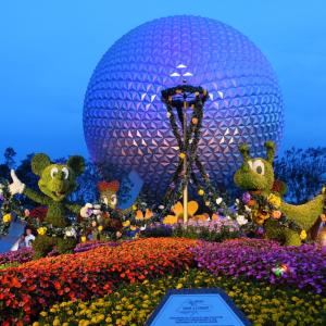 「フロリダ ウォルト・ディズニー・ワールド・リゾート」の朝日をYouTubeで楽しむ:海外ディズニー通信