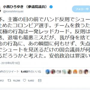 小西ひろゆき参議院議員 W杯の日本戦に絡め「安倍政治は罪深い」とツイートし話題に