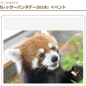 レッサーパンダは絶滅危惧種?  静岡市・日本平動物園で3連休特別イベント開催!レッサーパンダ☆ナイトも