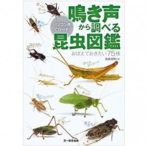 この鳴き声は何の虫? 鳴き声に注目した「昆虫図鑑」