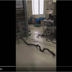 日本発のはしごをのぼるヘビ型ロボット