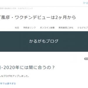 風疹対策-2020年には間に合うの?(かるがもブログ)