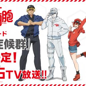 TVアニメ『はたらく細胞』新作エピソード放送決定!PV公開 オリジナルストーリーが展開するアプリゲームも