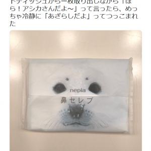 宇多田ヒカルさん「『ほら!アシカさんだよ~』って言ったら」 3歳の息子さんの冷静なツッコミに「いいね!」が14万超